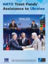2016-11-nato-trust-funds-assistance-to-ukraine_eesri-cp_eng